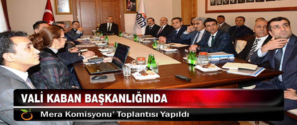 Vali Kaban Başkanlığında 'Mera Komisyonu' Toplantısı Yapıldı