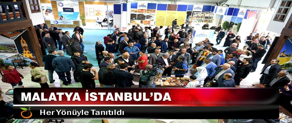 Malatya İstanbul'da Her Yönüyle Tanıtıldı