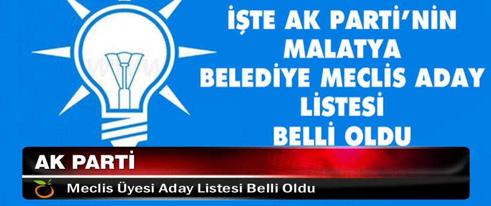 Ak Parti Malatya Meclis Üyesi Aday Listesi